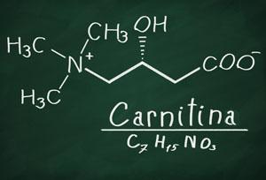 formula carnitina